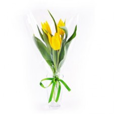 Мини букет 3 тюльпана